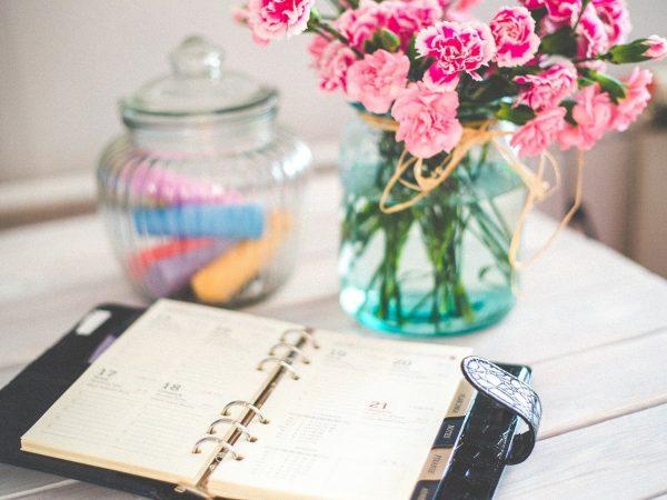 organizer, calendar, schedule